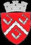 Primăria și consiliul local orașul Târgu-Ocna – Județul Bacău